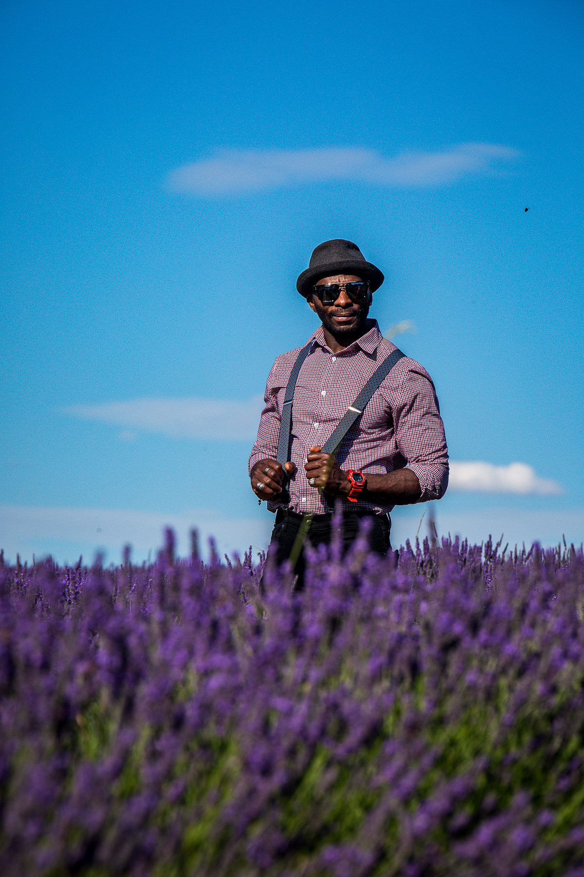 portraiture mayfield lavender field photographer