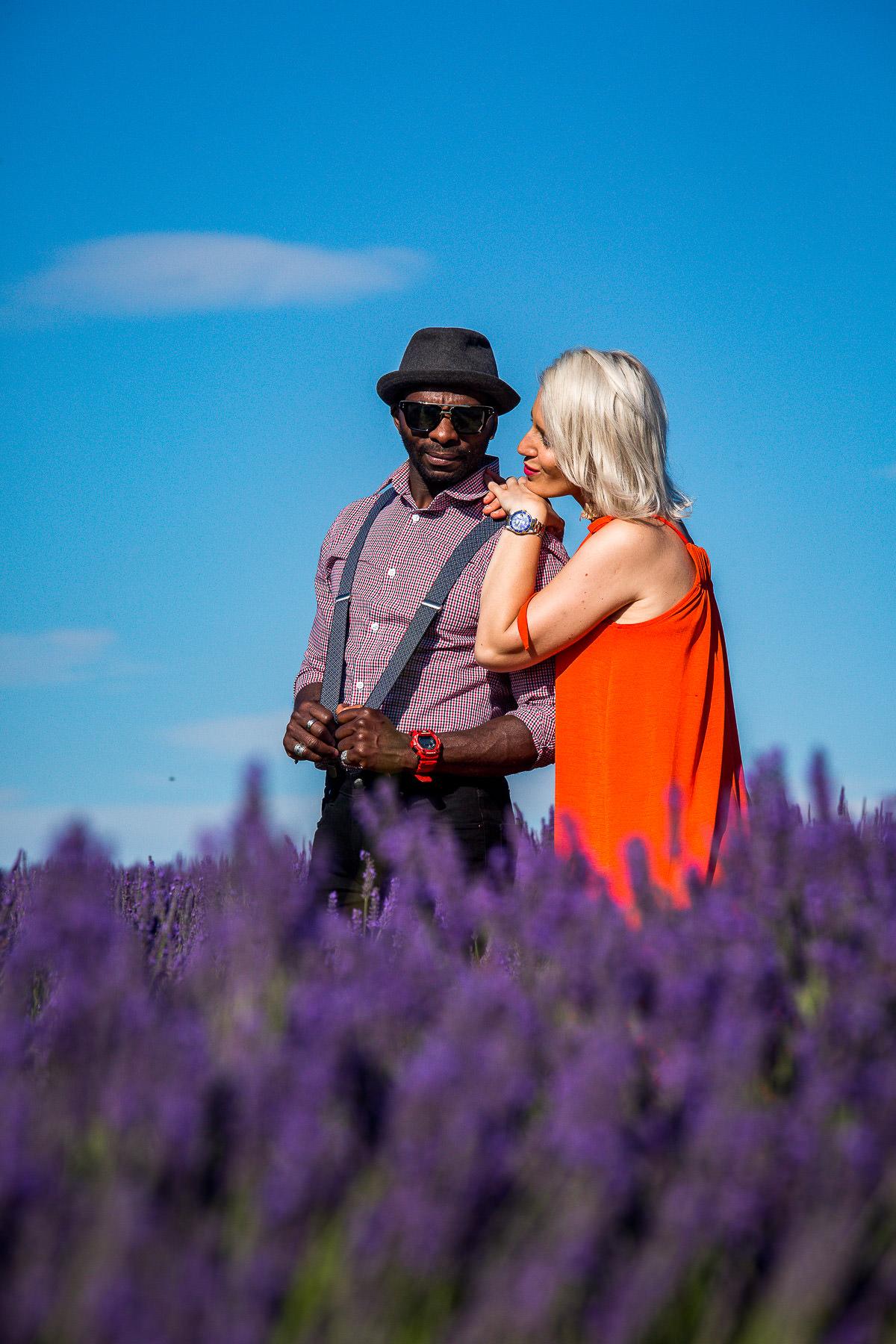 lavender field romance