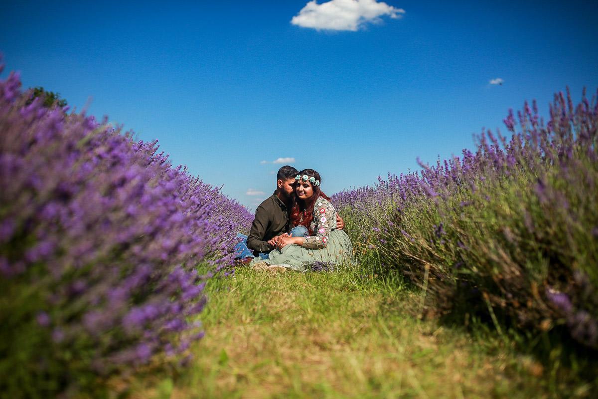 surrey lavender field photographer