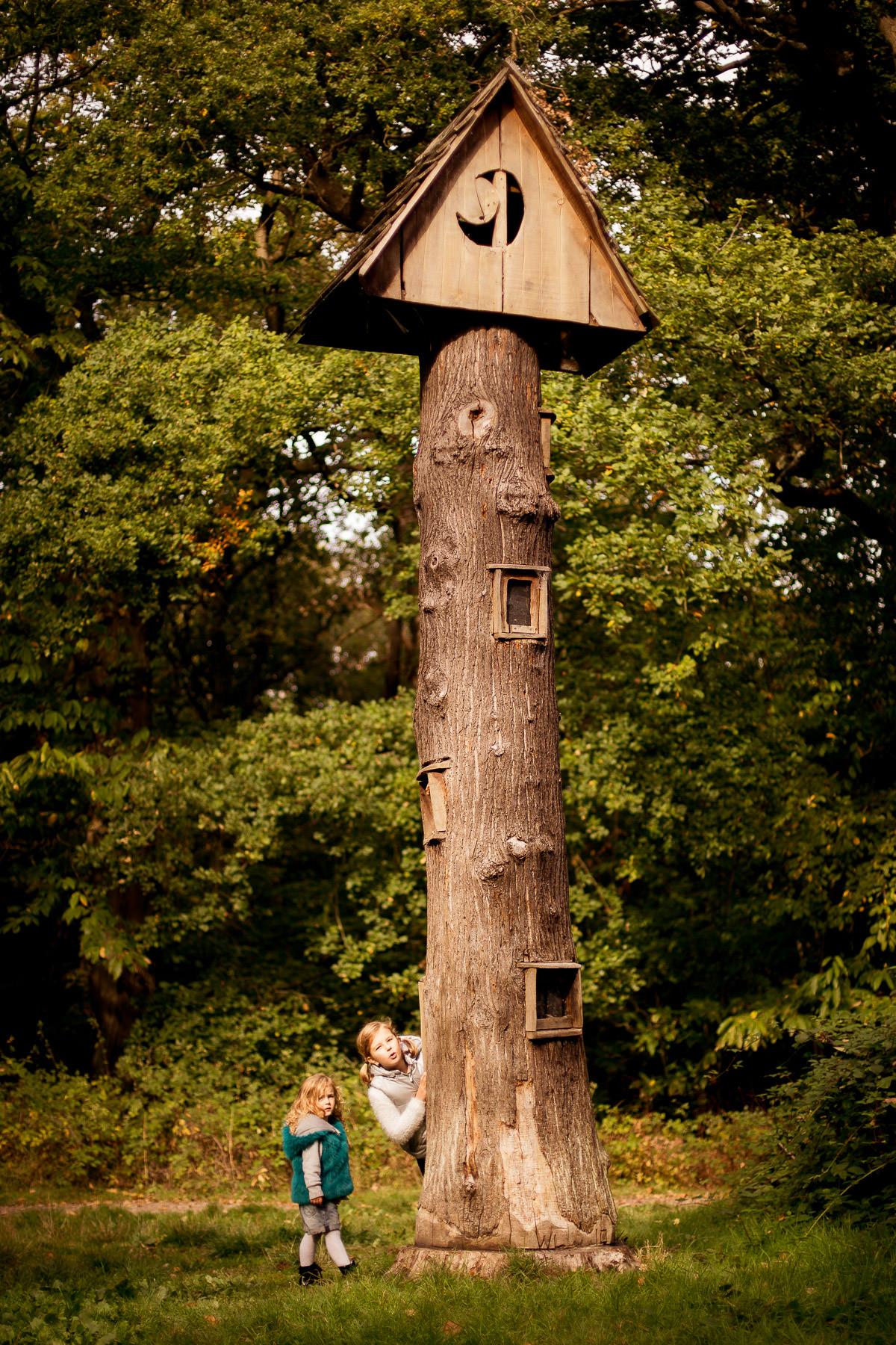 Mottingham Woods