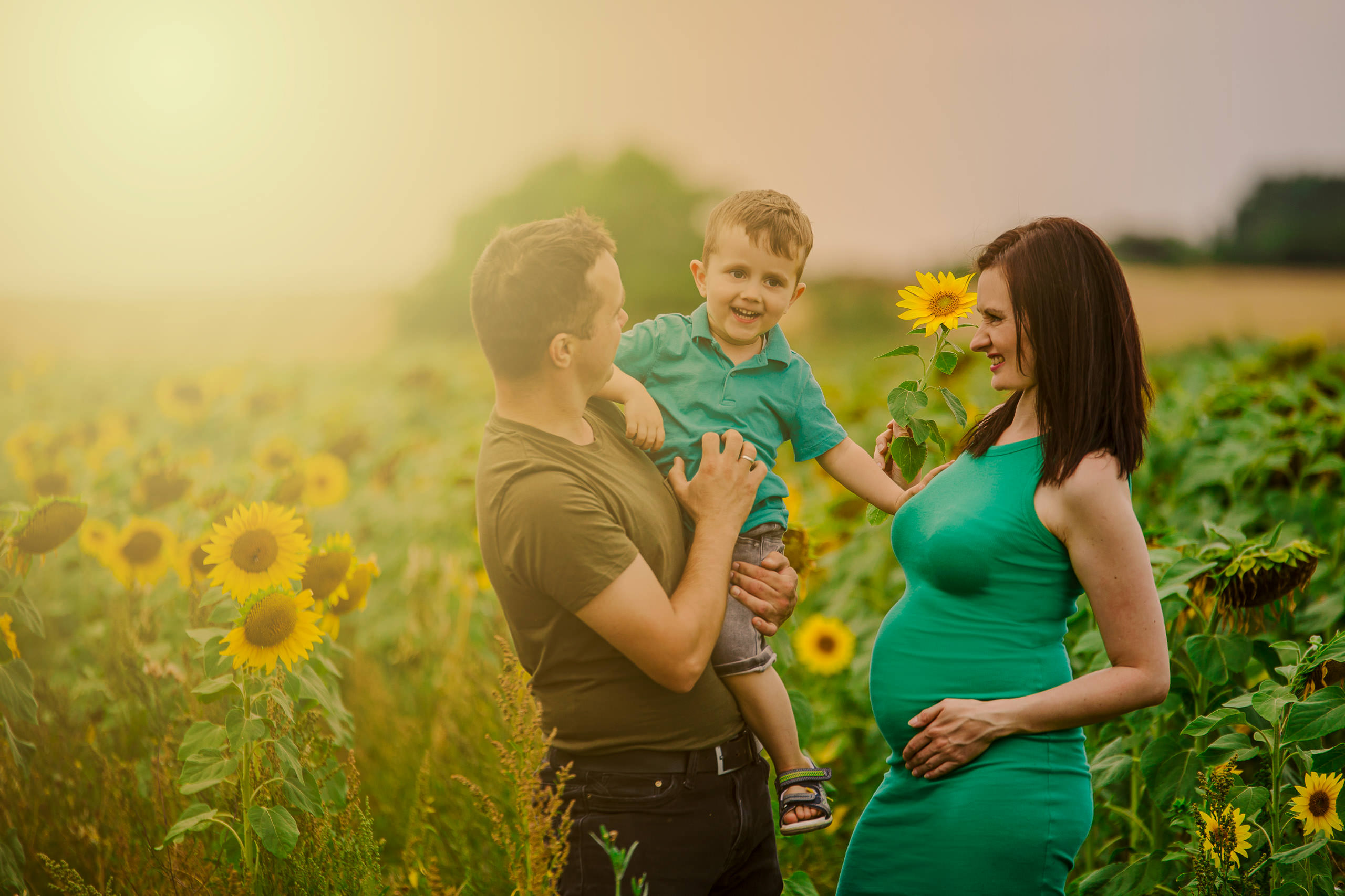 London Family Photography Sunflower Maternity Photo Session