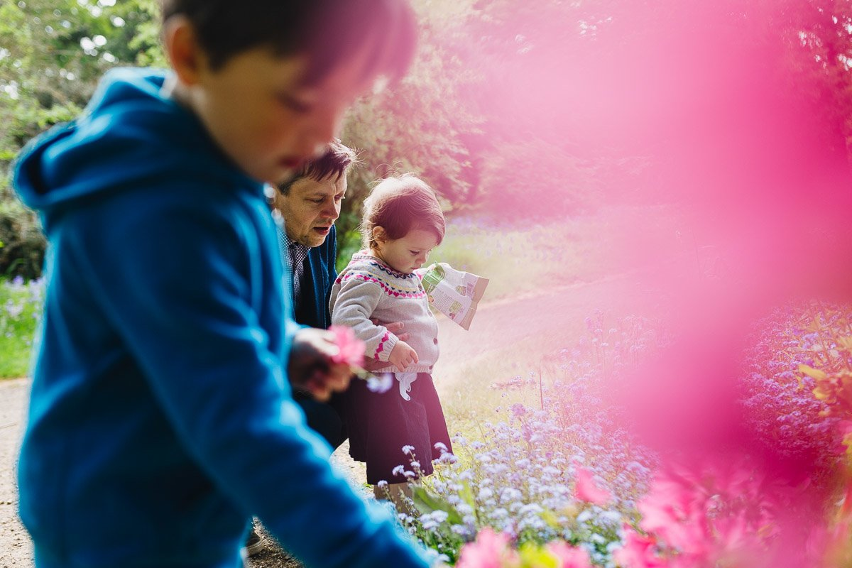 family photography in bushy park