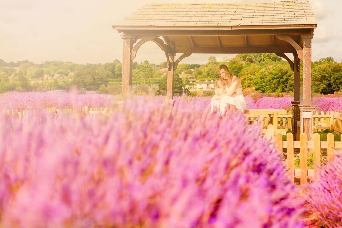 Mayfield Lavender Field in Surrey
